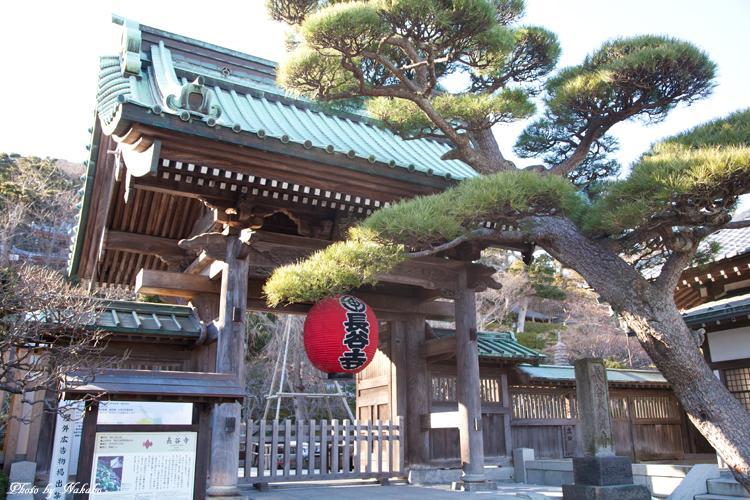 Kamakura-Enoshima_55.jpg