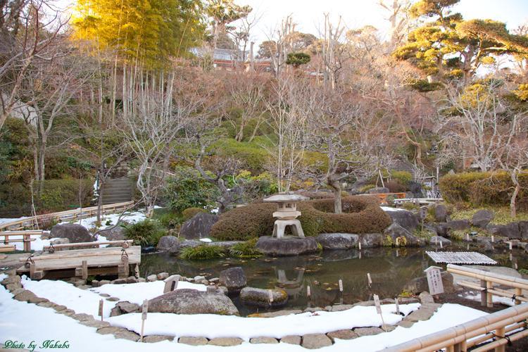 Kamakura-Enoshima_56.jpg