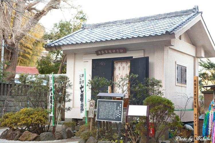 Kamakura-Enoshima_80.jpg