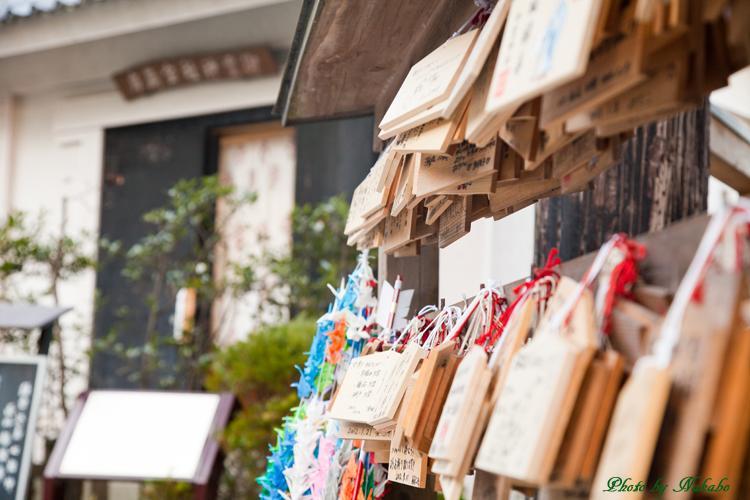 Kamakura-Enoshima_81.jpg