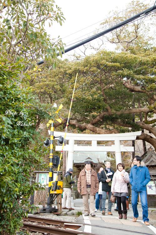 Kamakura-Enoshima_83.jpg