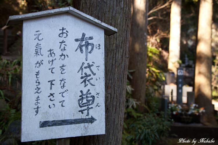 Kamakura-Enoshima_9.jpg