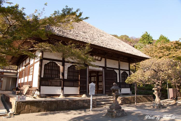 Kamakura-Koten-3.jpg