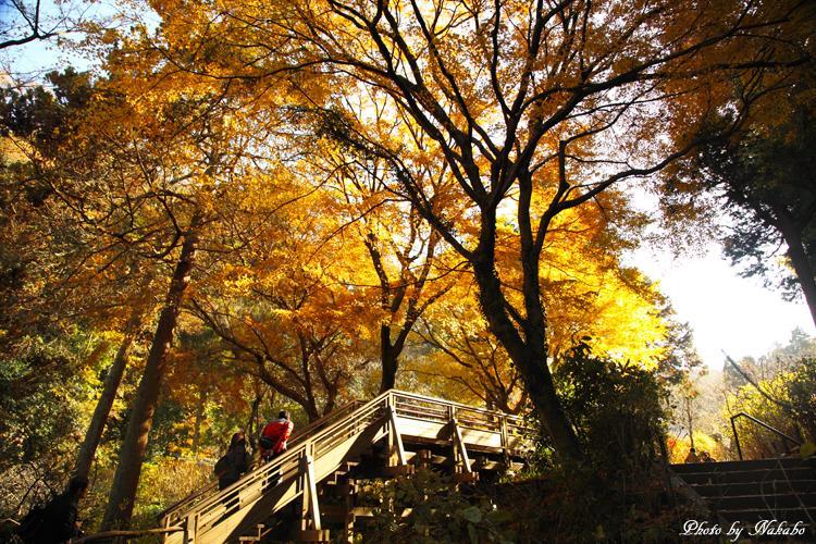 Kita-Kamakura_15.jpg