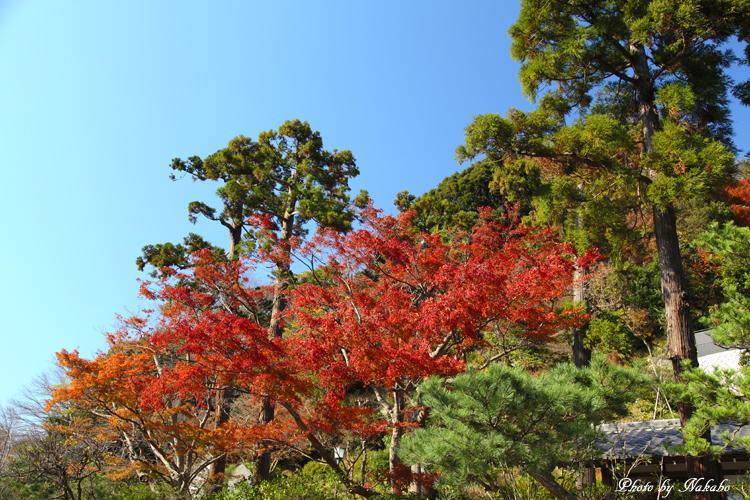 Kita-Kamakura_16.jpg