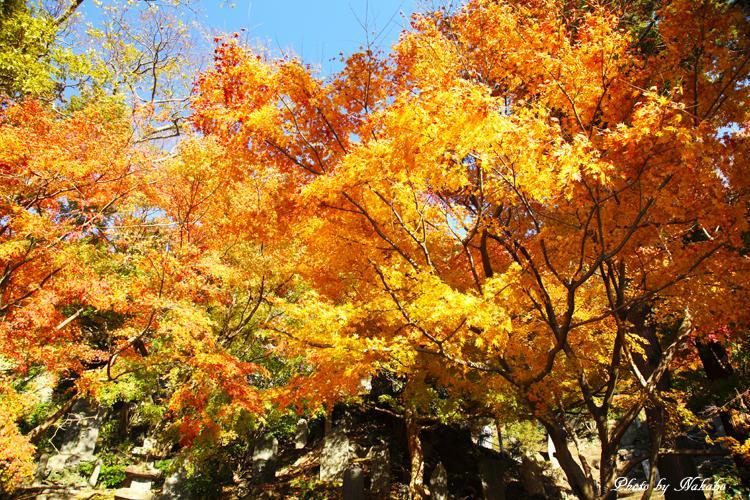 Kita-Kamakura_18.jpg