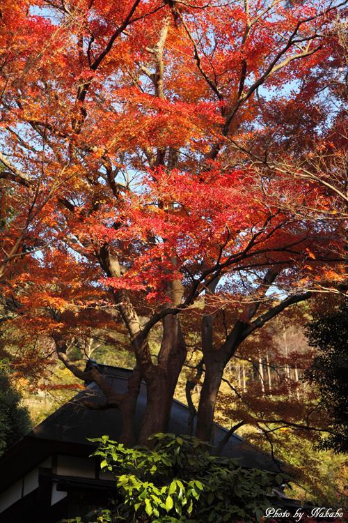 Kita-Kamakura_2.jpg
