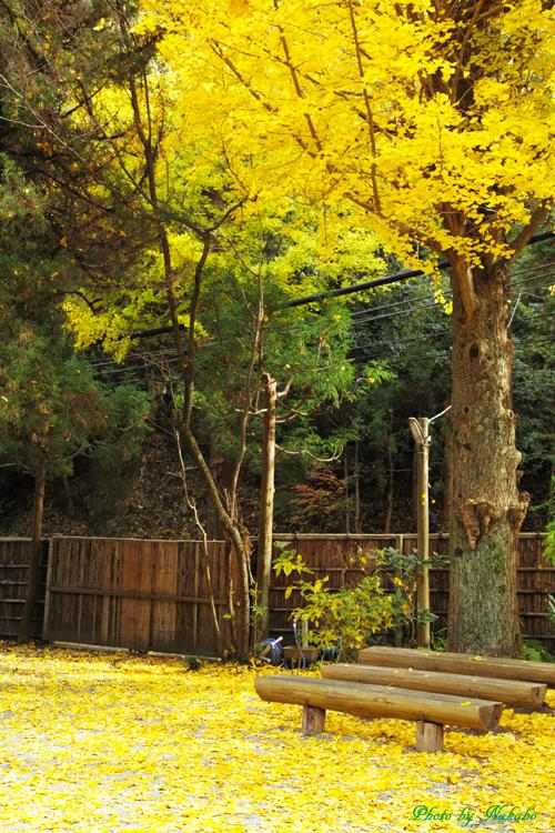 Kita-Kamakura_22.jpg