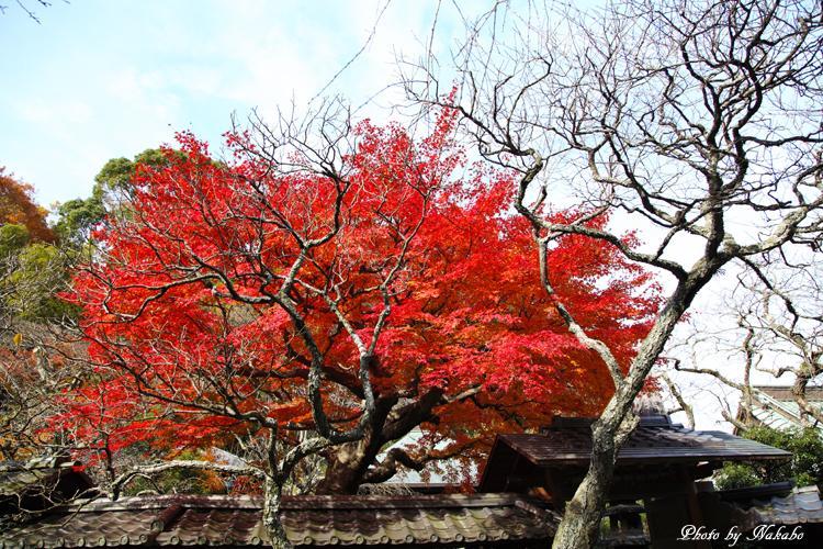 Kita-Kamakura_26.jpg