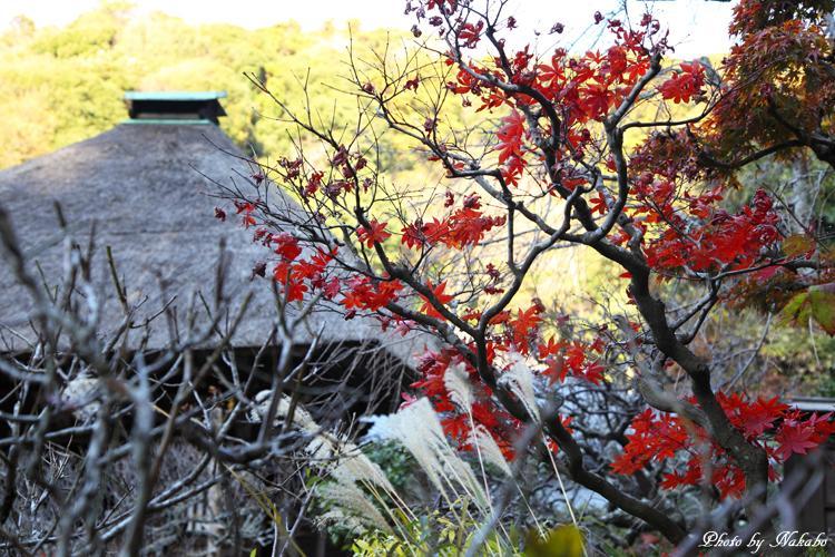 Kita-Kamakura_4.jpg
