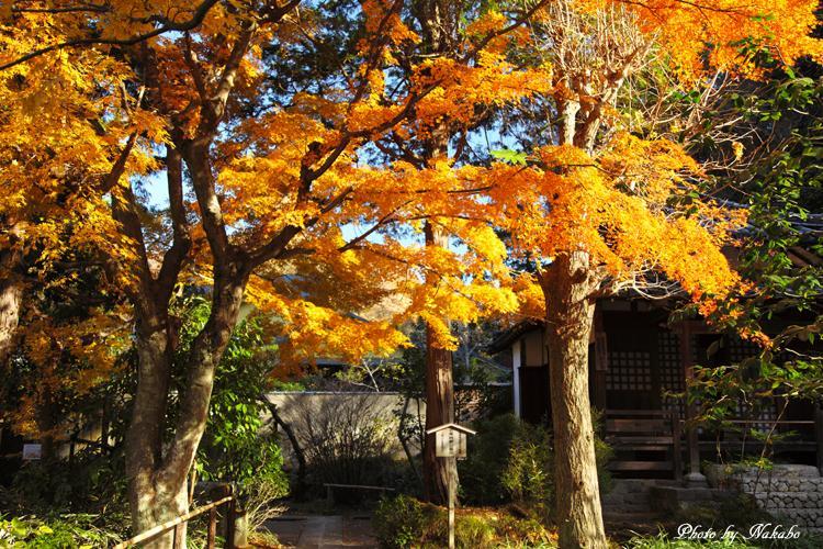 Kita-Kamakura_9.jpg