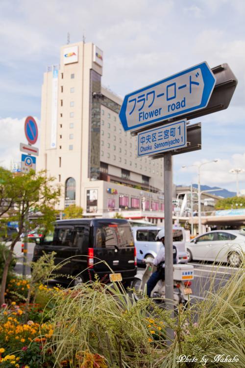 Kobe_57.jpg