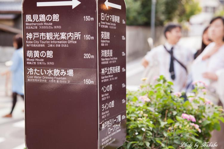 Kobe_76.jpg