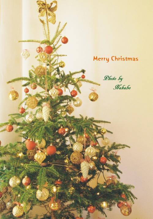 Yamate_Christmas_17.jpg