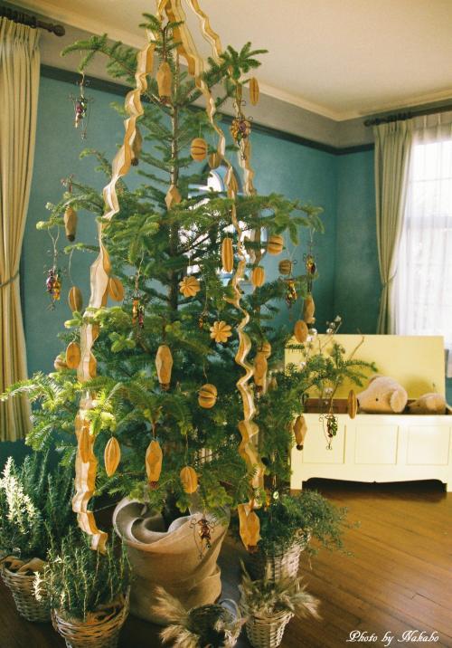 Yamate_Christmas_35.jpg