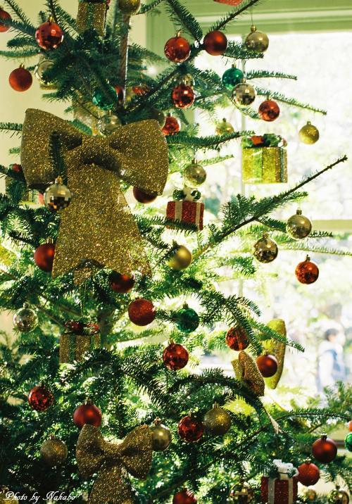 Yamate_Christmas_63.jpg