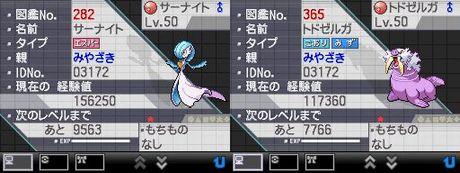 宮崎トド・サーナイト1