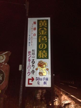 黄金の猿 旗2