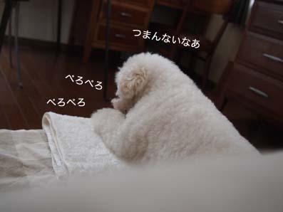 120704_6.jpg