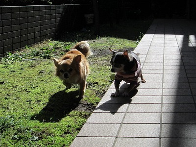 nami練習 2011  012