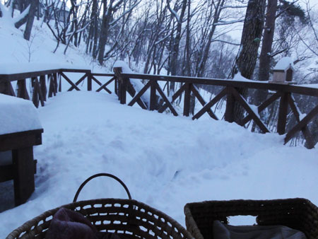 大雪の朝1