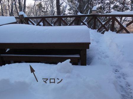大雪の朝2