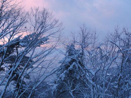 大雪!!1