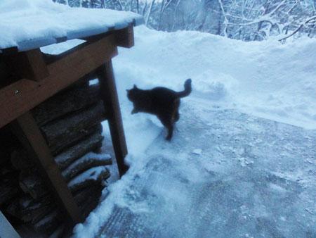 大雪!!3