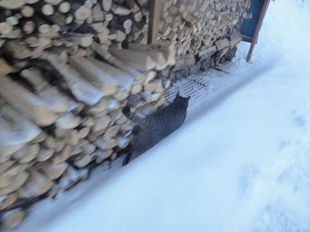 大雪!!9