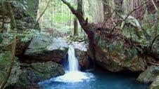 八重谷湧水②