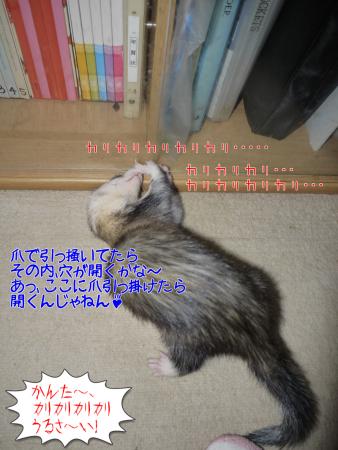 """11月10日(1"""") (7)"""