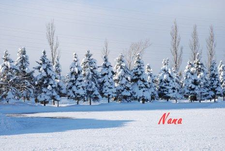 winter21-32.jpg