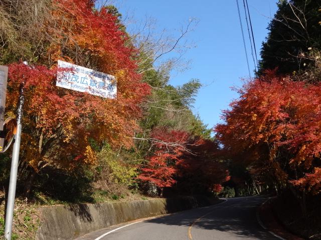 加茂広域農道入口