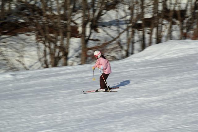 まぁのスキー