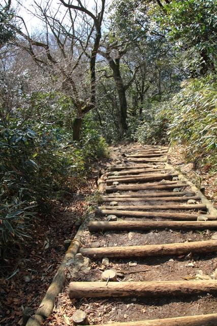 御幸が原コース階段