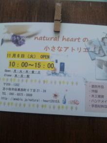5_20121102041848.jpg