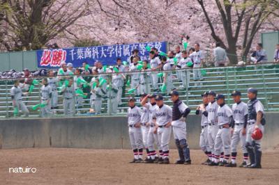 2012-04-13-113.jpg