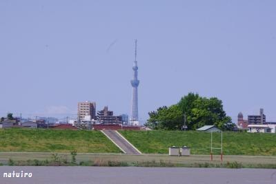 2012-05-05.jpg
