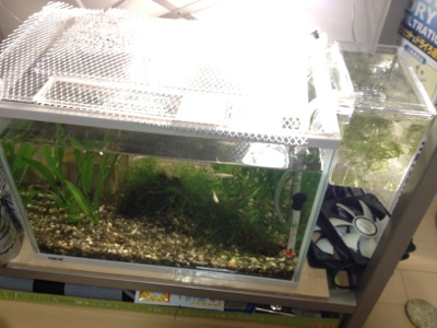 fc2blog_20121029221157577.jpg