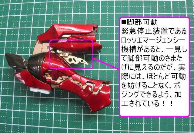 IMG_2903.jpg