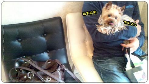 ・狙convert_20120501212739