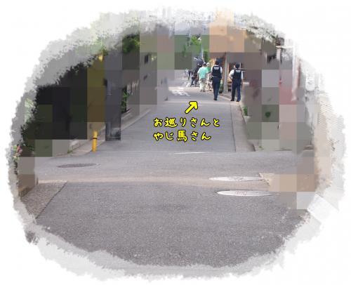 P5261866_convert_20120526220450.jpg