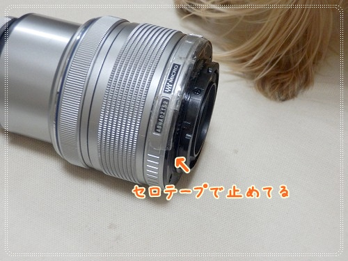 P8190886.jpg