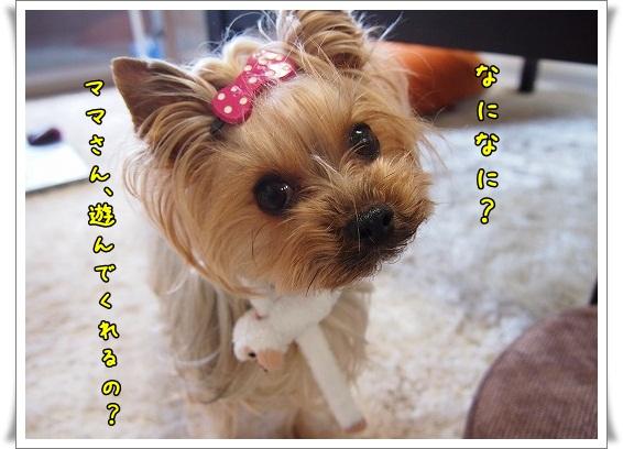 PC298946.jpg