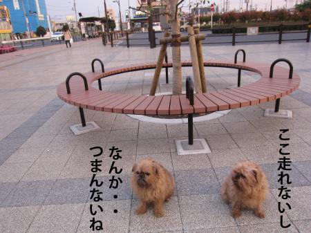 07_convert_20120630124523.jpg