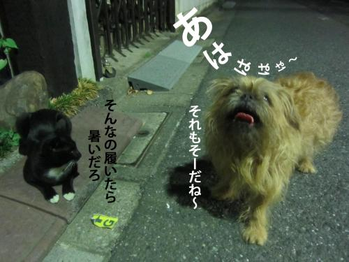 08_convert_20121004144024.jpg