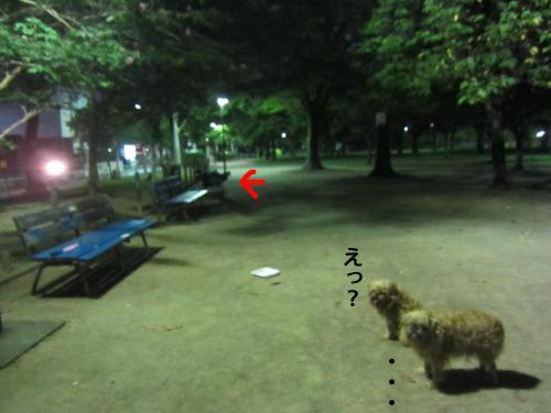 10_convert_20120913150329.jpg