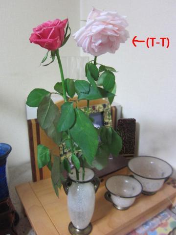2_convert_20120908144713.jpg