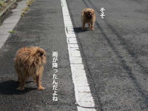 2_convert_20120912150235.jpg