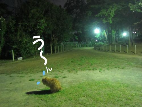 2_convert_20120928162244.jpg